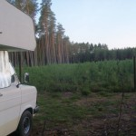 Unser Plätzchen im Wald