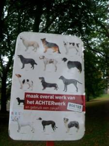 """""""Wenn dein Hund von einer dieser Rassen ist wollen wir ihn für unsere Kunstausstellung und geben dir mindestens 50€ dafür"""" ok, ich habe keine Ahnung was da steht."""